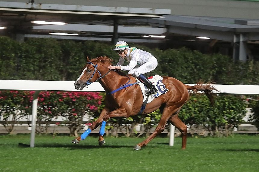 Shadow Breaker has led and won over tomorrow's course and distance. There is every likelihood he will try to do the same from a good draw in Race 2 at Happy Valley.