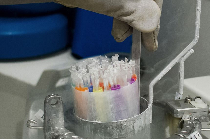 Biological samples being placed into a nitrogen freeze chamber in the cryogenic cold storage laboratory at the Ambroise Pare Clinic in Paris, France, last Friday. The vaccine developed by Pfizer must be stored in deep-freezer conditions of minus 70 d