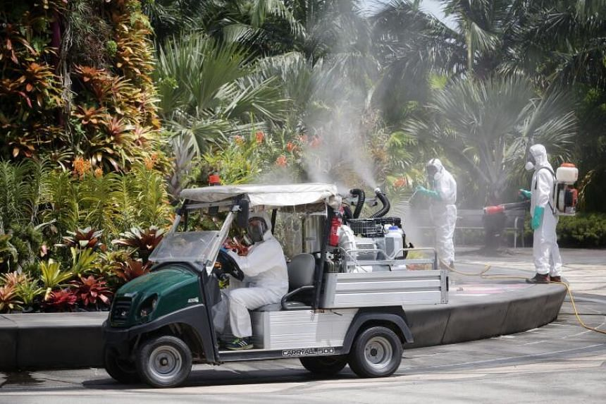 Staff at Gardens by the Bay demonstrating the use of a vehicular sprayer to fertilise the displays on Nov 16, 2020.