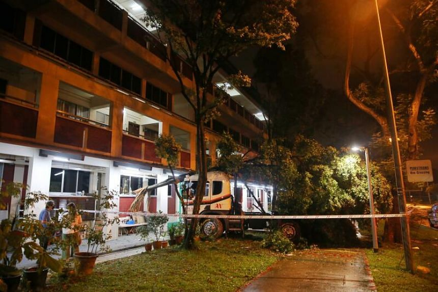 After crashing into the trees, the lorry kept moving until it collided with the front of the four-storey block.