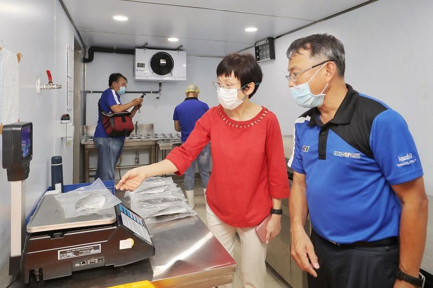 Sustainability and the Environment Minister Grace Fu looking at workers cut and pack the Asian sea bass on the Eco-Ark on Nov 20, 2020.