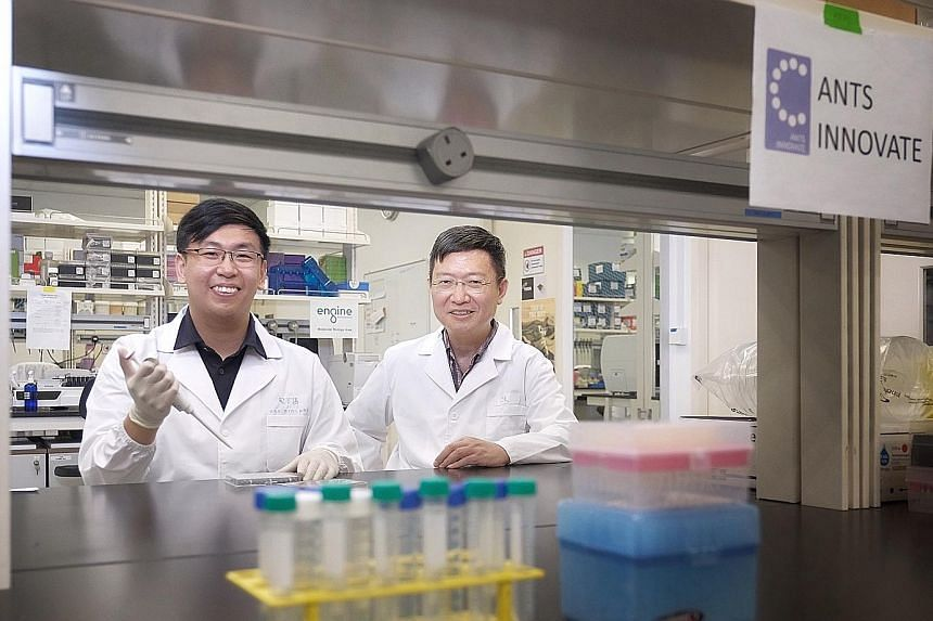 Above: Founders of Ants Innovate Ong Shujian (left) and Hanry Yu in their lab in Biopolis. The company specialises in cell-based meat. Left: Mr Ho Lip Teng, a business development manager at a waste management equipment provider, sees opportunities i