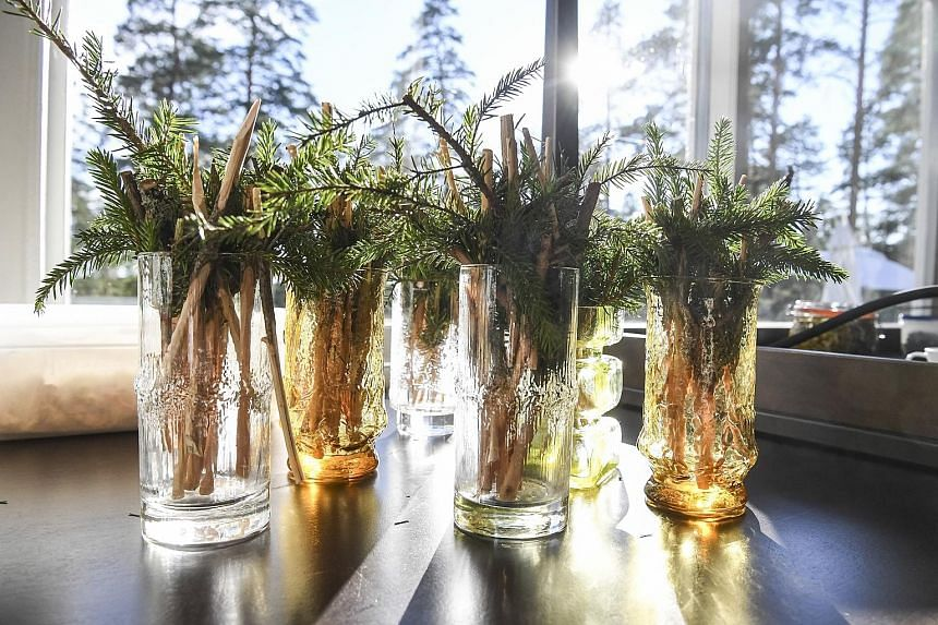DON'T PINE FOR ME: Glasses with conifer sticks and pine needles (above) are set out for the dining event.