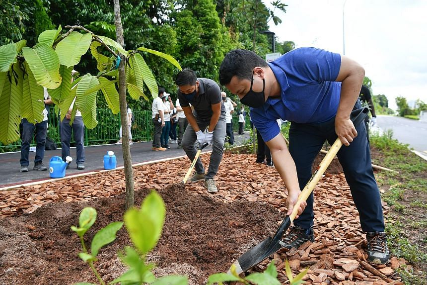 National Development Minister Desmond Lee (right) and Speaker of Parliament Tan Chuan-Jin planting a tree at the Lornie Nature Corridor yesterday. The effort is part of the One Million Trees movement.