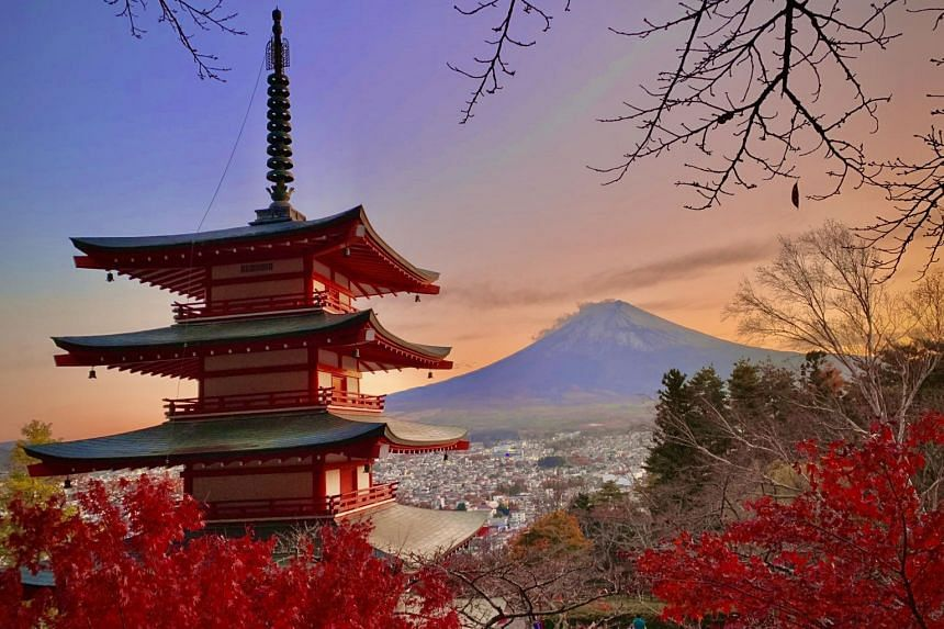 It may be too late this year for visitors to enjoy Japan's autumn season, but by next November, travellers might be able to do so again.
