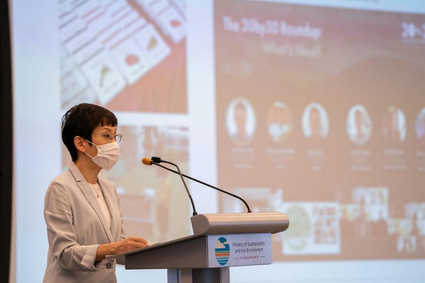 Minister of Sustainability and the Environment Grace Fu speaking at MSE's year-end event on Nov 25, 2020.