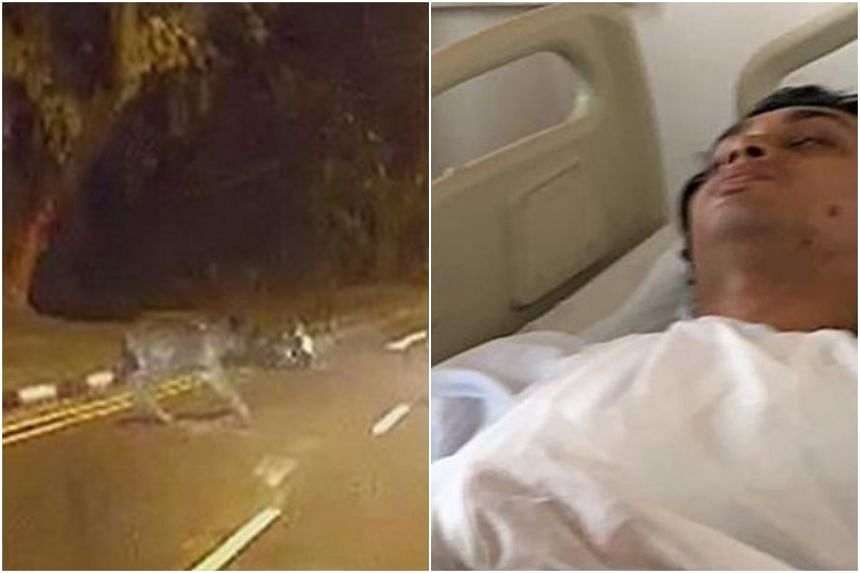 Mr Muhammad Aliff Mohd Jeferee said he collided with a large sambar deer, that he alleged was dashing across Upper Thomson Road, on Sept 21, 2019.