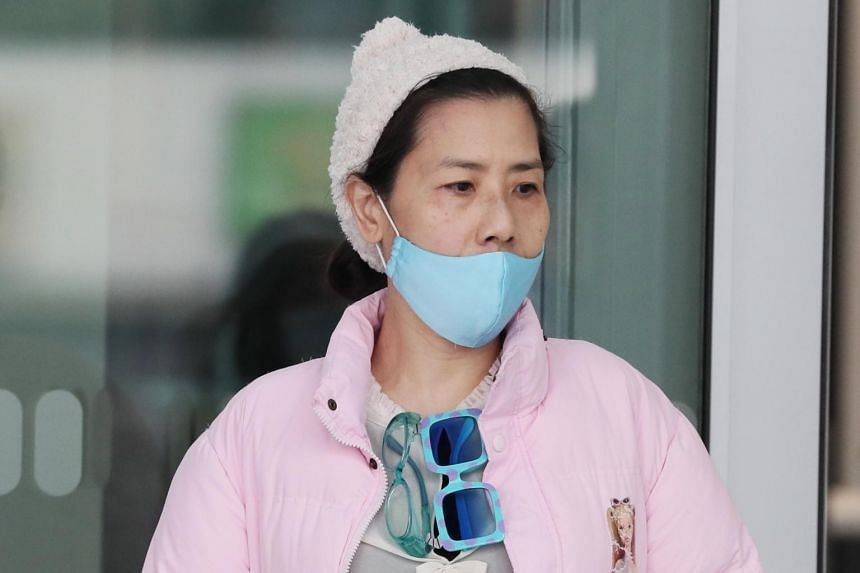 Tan Lee Hoon is facing eight counts of voluntarily causing hurt to two Filipino domestic helpers.