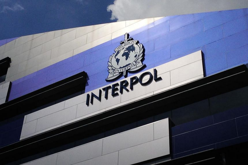 Interpol said more than 200 people arrested in a global crackdown on smuggling and trafficking networks.