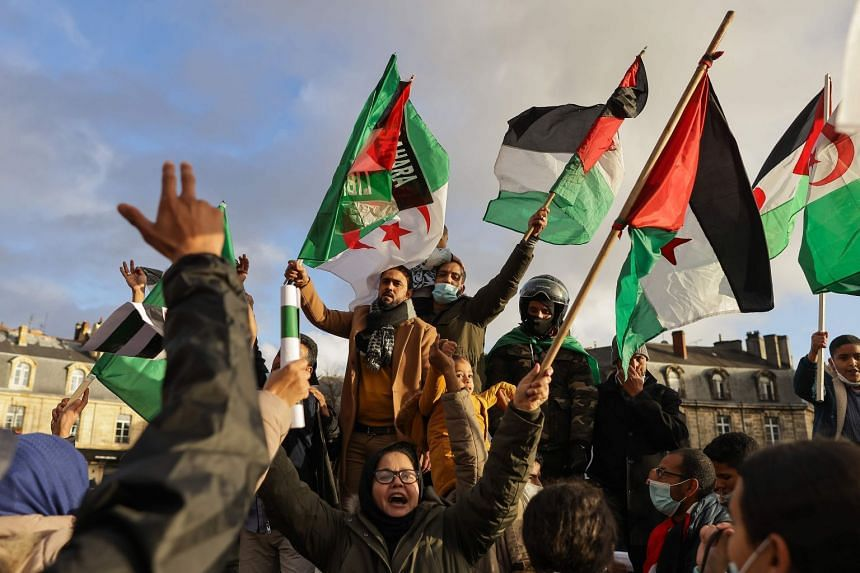 Protestors hold Western Sahara and Algerian flags during a demonstration in France on Dec 12, 2020.