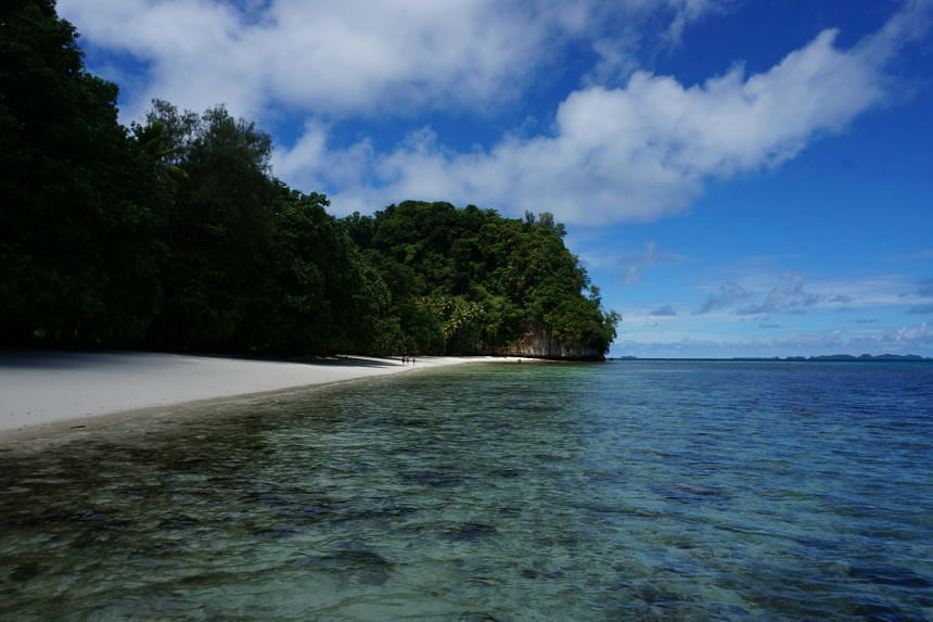 Palau, long regarded as a pioneer in marine conservation, has banned foreign commercial fishing vessels from its waters.