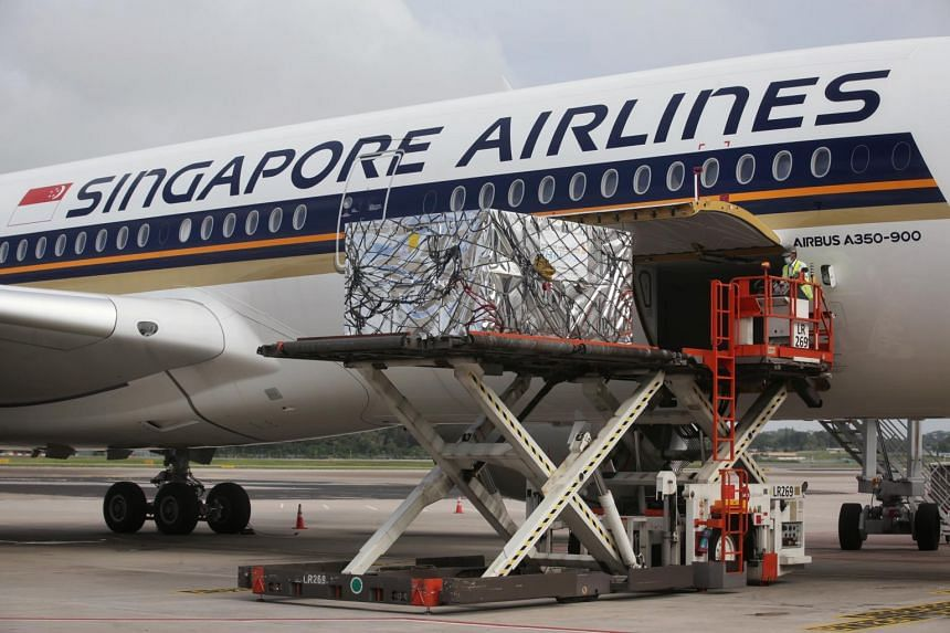 Cargo containing pharmaceuticals, with a thermal blanket to maintain low temperatures, being loaded up a Singapore Airlines plane on Dec 5, 2020.