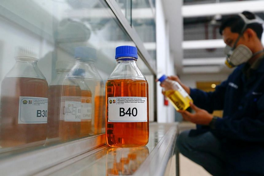 Indonesia makes it compulsory for its diesel to be blended with biocontent made out of palm oil to reduce reliance on fuel imports.