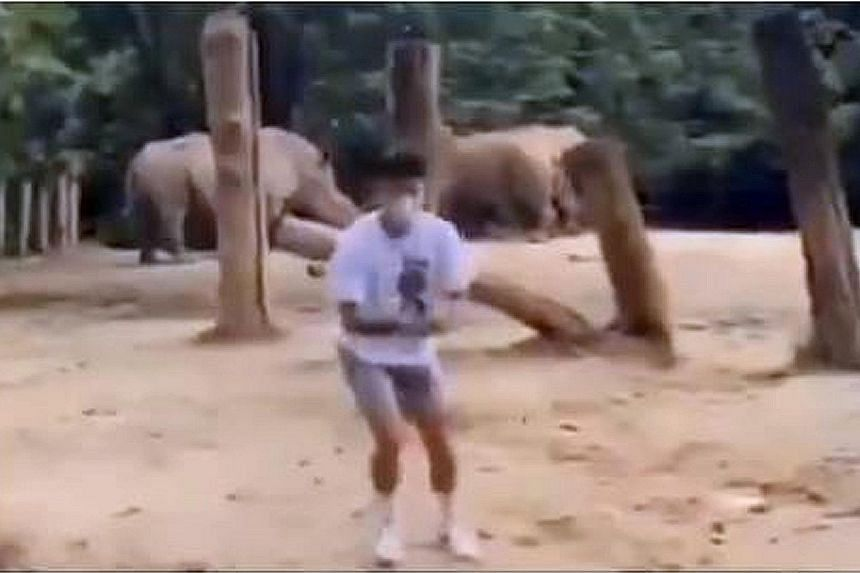 A video screenshot showing the youth inside the white rhinoceros enclosure at the Singapore Zoo on Thursday.