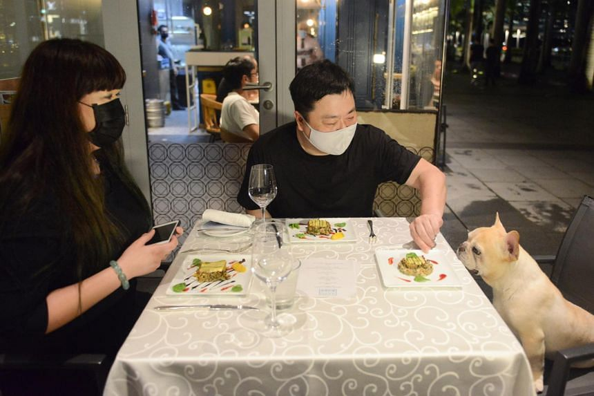 The New Paper food columnist Yeoh Wee Teck (centre), his French bulldog, Rufus, and STFood online editor Hedy Khoo tasting the food prepared by chef Justin Quek with products from Furry's Kitchen.