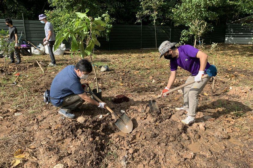 Volunteers from nature groups doing soil preparation for tree planting at Kranji Coastal Nature Park.