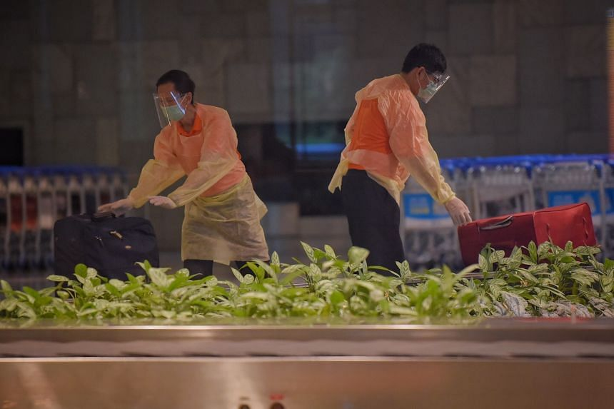 Attendants prepare luggage belonging to Singapore Airlines passengers from London at Changi Airport on Dec 22, 2020.