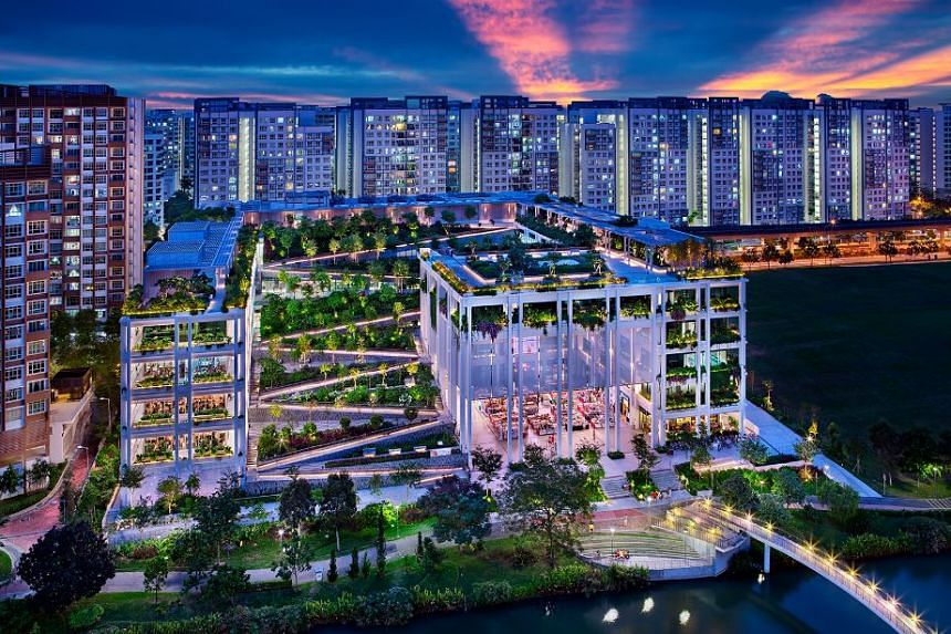 Oasis Terraces is one of the four projects for which CCDC has won a Construction Excellence Awards (Excellence) accolade.  PHOTO: CHINA CONSTRUCTION (SOUTH PACIFIC) DEVELOPMENT CO