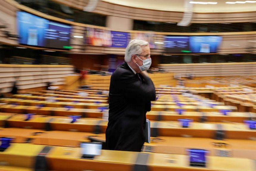 EU chief Brexit negotiator Michel Barnier is pictured at the European Parliament in Brussels.
