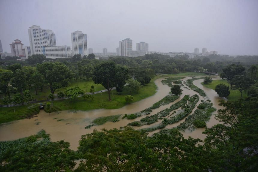 High water level in the Bishan-Ang Mo Kio Park on Jan 1, 2021.