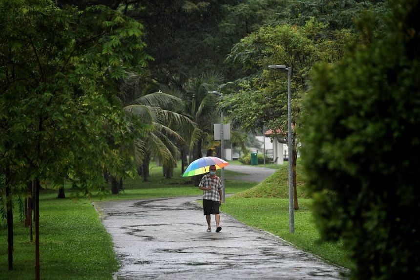 According to a weather advisory by the Meteorological Service Singapore, the first week of the year will likely be wet and windy.