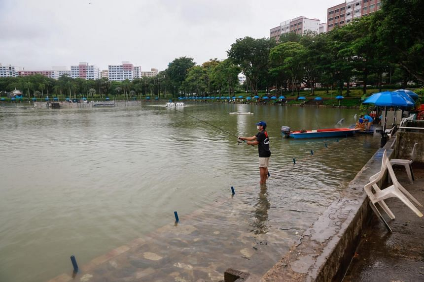 At D'Best Fishing Pond in Pasir Ris Town Park, which was flooded on Jan 2, 2021, water levels began receding.