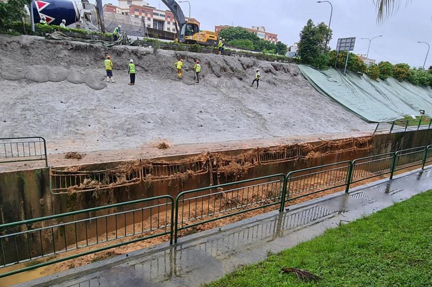 Slope erosion seen beside the slip road of TPE (Changi) to Loyang Avenue.