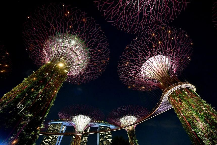 Garden Rhapsody, the popular light and sound show in which lights on the 12 Supertrees flicker in unison with a musical soundtrack, was suspended during last year's circuit breaker.