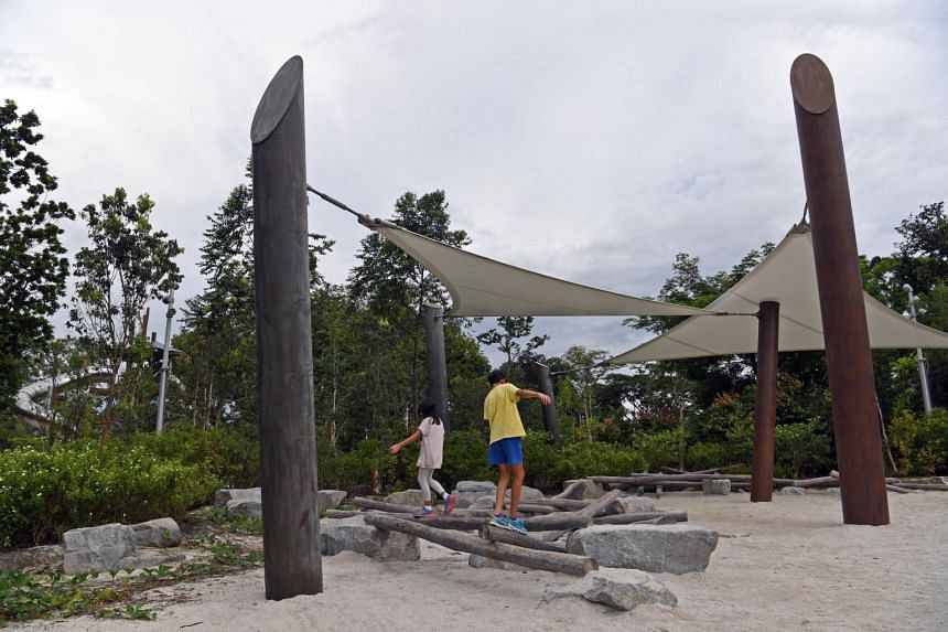 Children playing at an outdoor playground in Jurong Lake Gardens. A KK Women's and Children's Hospital survey, which polled 100 parents of children aged five to 14, in November found that 43 per cent did not do any vigorous physical activity, whi