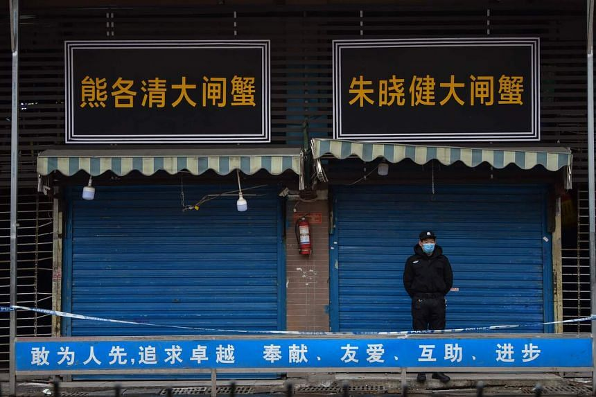 The first coronavirus cases were detected in Wuhan, among workers at the Huanan Wholesale Seafood Market (above).
