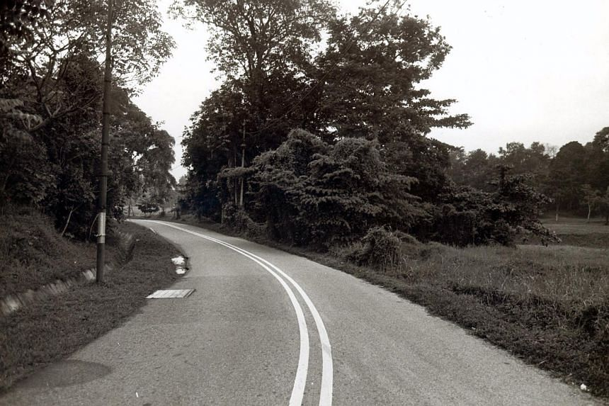 The body of Ms Winnifred Teo Suan Lie was found in dense undergrowth along a deserted stretch of Holland Road on May 22, 1985.