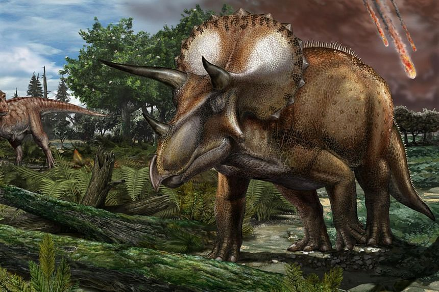 Dinosaurs such as Triceratops have the right mix of size and speed to deposit seeds 4.8km to 32km from parent plants.