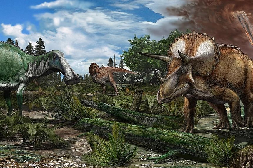 A study published recently laid out a framework for calculating how far dinosaurs - ranging in weight from roughly 9kg to 90 tonnes - might have carried the seeds of prehistoric plants.