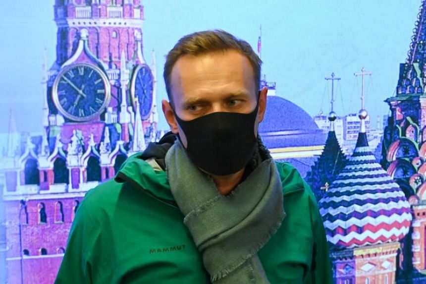 Police seized Alexei Navalny less than an hour after he returned to Russia.