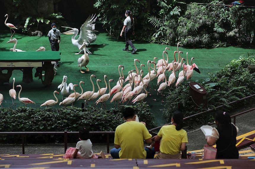 Jurong Bird Park marks its 50th anniversary with a special admission price of $2.50. The writer visited the park on Tuesday, but did not know that an additional $2.50 was payable at each gated area.