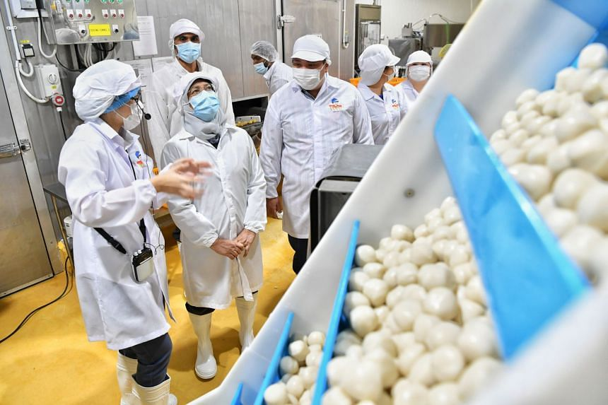 President Halimah Yacob flanked by Thong Siek Food Industry deputy chief operating officer Lim Xiao Fei (left) and Mr Neo Kah Kiat, founder, chairman and chief executive of Neo Group, at the Thong Siek Food Industry facility yesterday. Thong Siek is
