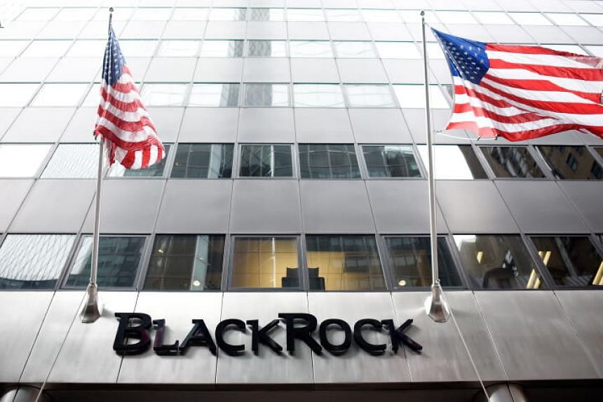 BlackRock was not particularly concerned about an equity market bubble.