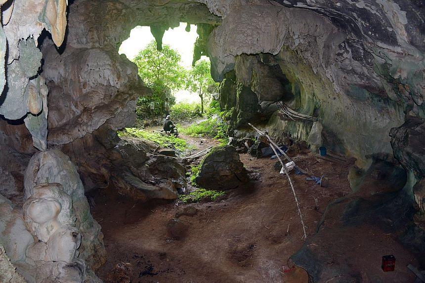 The mouth of Leang Tedongnge cave in a remote valley in the Maros-Pangkep karst region, famed for its ubiquity of cave art and archaeological findings. Some 84 pieces of prehistoric art - mostly hand outlines and sketches of Sulawesi wild pigs - were