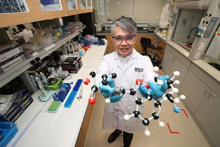 Professor Eric Chan, a pharmaceutical scientist at the National University of Singapore, and his collaborators from the Health Sciences Authority have been able to identify two trending synthetic cannabinoids by using their metabolites as biomarkers