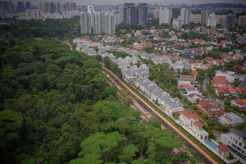 The Housing Board had sought feedback from Dec 20 to Jan 16 on an environmental baseline survey on the Ulu Pandan estate.