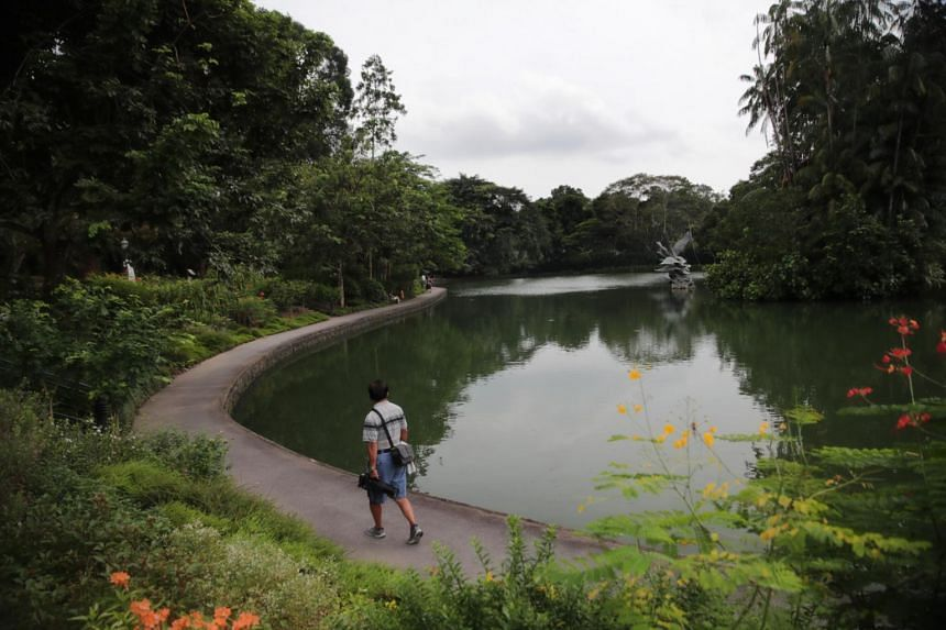Those in Singapore who were younger, more educated and earned higher incomes were more likely to agree that protecting the environment should be given priority.