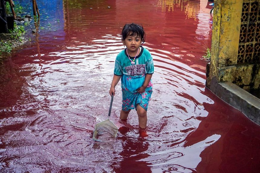 It is not uncommon for rivers in Pekalongan to turn different colours.
