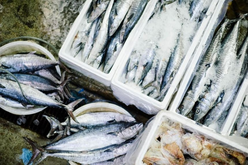 China, New Zealand's largest export market, bought more than NZ$600 million (S$576 million) of seafood from it in 2020.