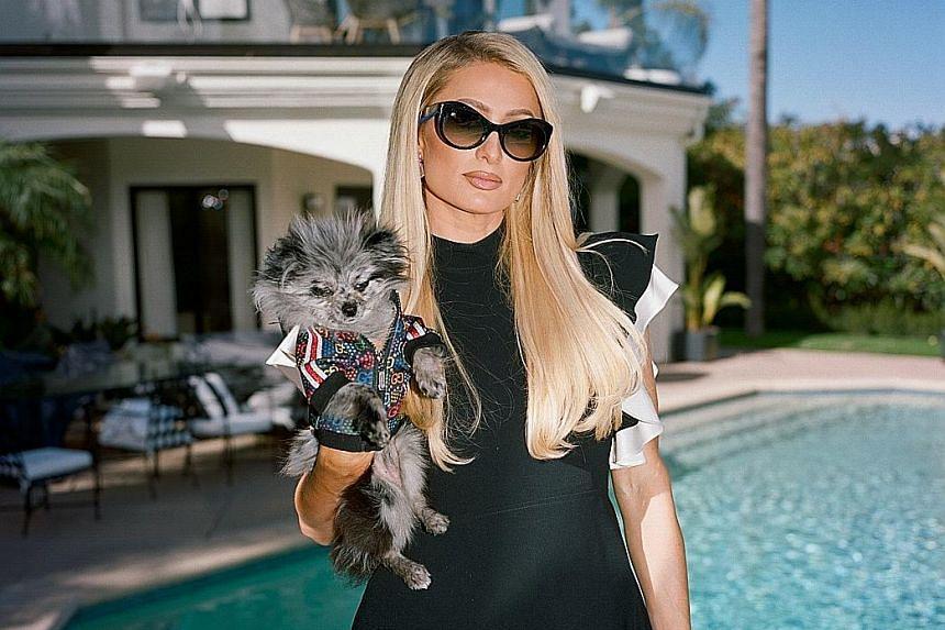 Paris Hilton (above).