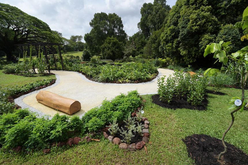It incorporates about 30 plants from the Istana's Spice Garden, launched in 2015, and now houses more than 100 plant species.