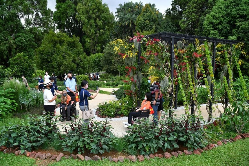 A collaboration between the President's Office and the National Parks Board, the garden has a wheelchair-friendly footpath that is at least 1.5m-wide.