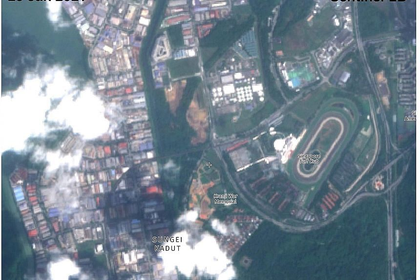 Screenshots of satellite images showing the Kranji woodland area in March last year and last month. Green patches totalling at least 8ha - or 11 football fields - were cleared by Jan 25 this year, according to satellite Sentinel-2B.
