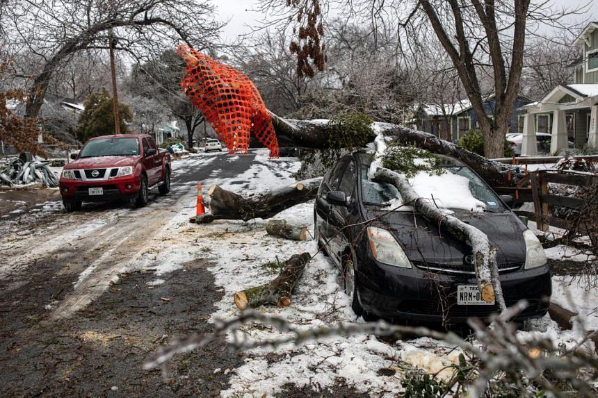 A fallen tree on Feb 18, 2021, in Austin, Texas, damaged a vehicle.