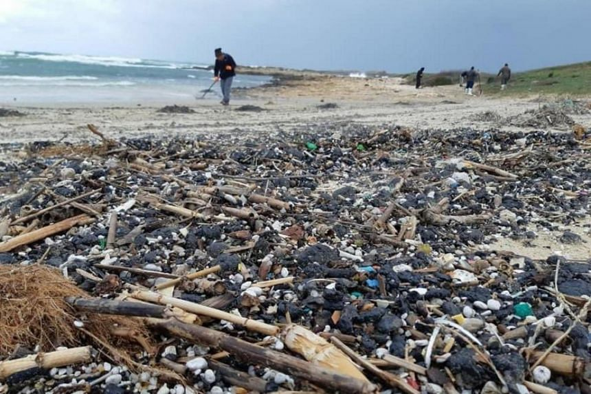 Thousands of volunteers gathered to remove the clumps of sticky black refuse from the pale beaches on Feb 21, 2021.