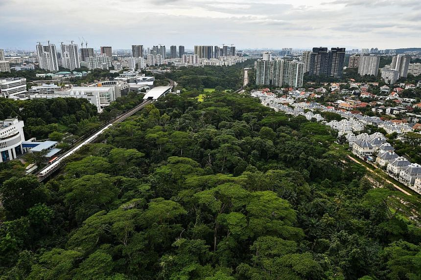 The core purpose of HDB housing has also emerged as a side issue of the debate over whether to keep Dover Forest (right). With its location in prime District 10 as well as the mature Queenstown estate, some have argued that Dover Forest could be a lo